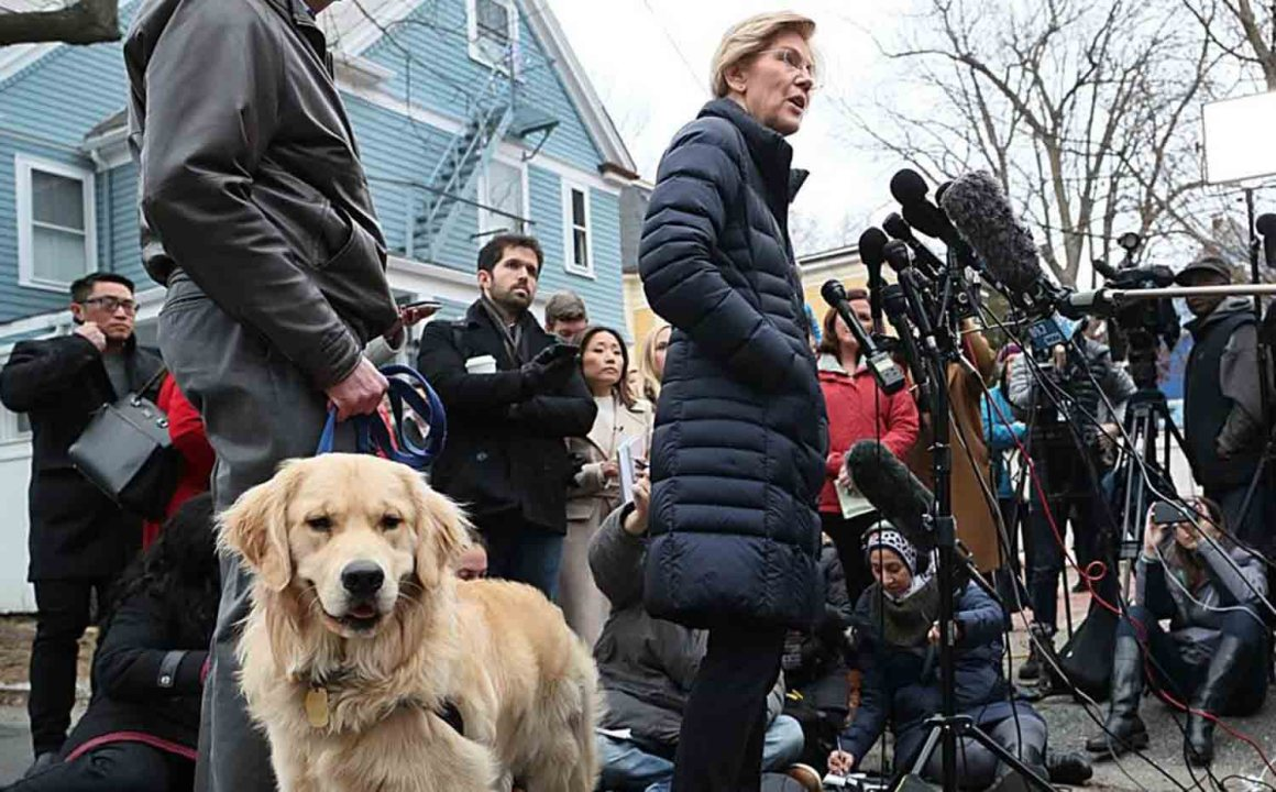 Dogs in the News Senator Warren and Bailey