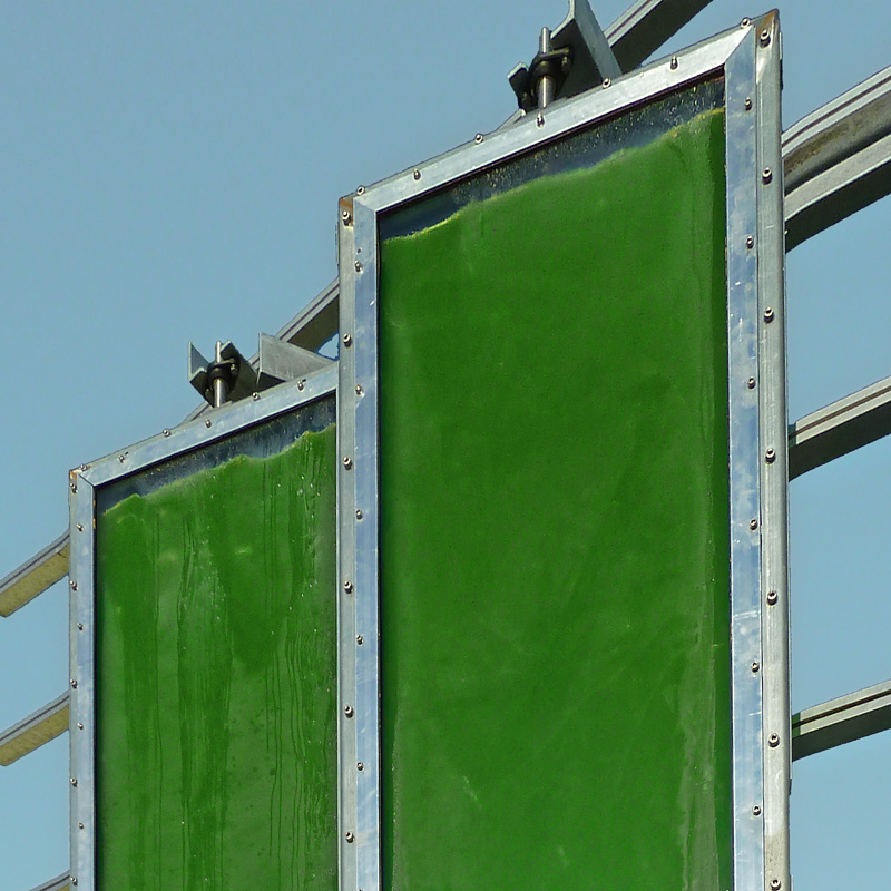 Algae Building - Spitterwerk Architectes