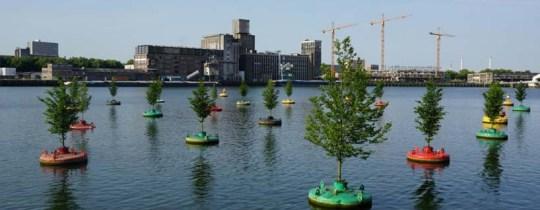 Dobberend Bos - Rotterdam - Pépinières Van Den Berk