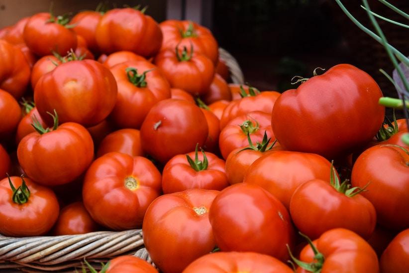 El tomate de Los Palacios, protagonista de las XVIII Jornadas Gastronómicas de los hoteles de Sevilla