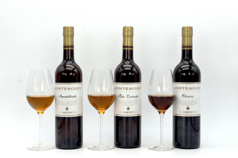Delgado Zuleta renueva la imagen de su gama de vinos Monteagudo