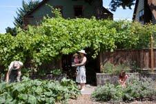 Tierra Soul Farm