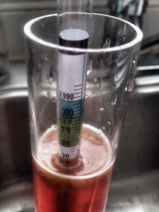 Today is day six and the specific gravity has dropped. Tomorrow I will check again and it's racking time!