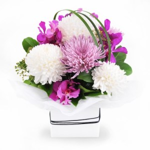 Mothers Day Flowers   Happy Mothers Day   Flower Delivery Make Mum s Day
