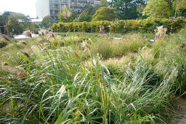 20ieme_garden