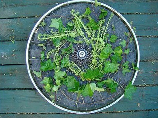 Bicycle-Wheel-VerticalGarden