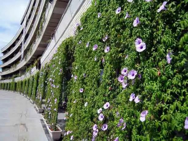 akaywa-city-hall-bloomberg