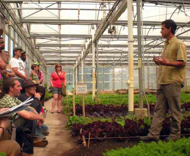 farm-school-nyc-stone-barns-greenhouse