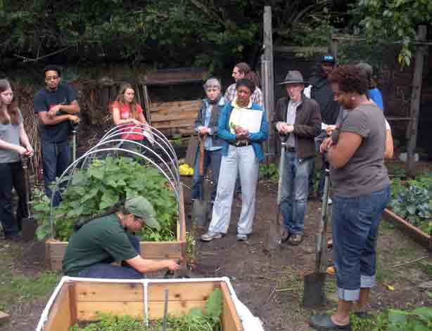 farm-school-nyc-taqwa-commun-farm