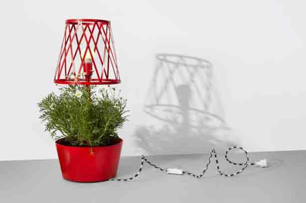 siesta-red-plant-lamp