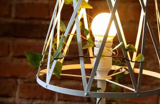 siestastudio-plant-light-bulb