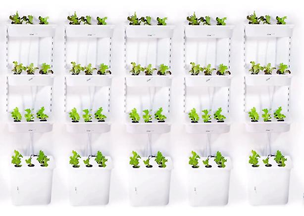 Eliooo verticais-jardins-múltiplos