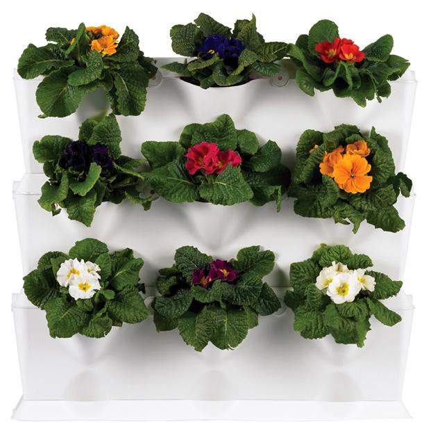 Minigarden_setof3_flowers1