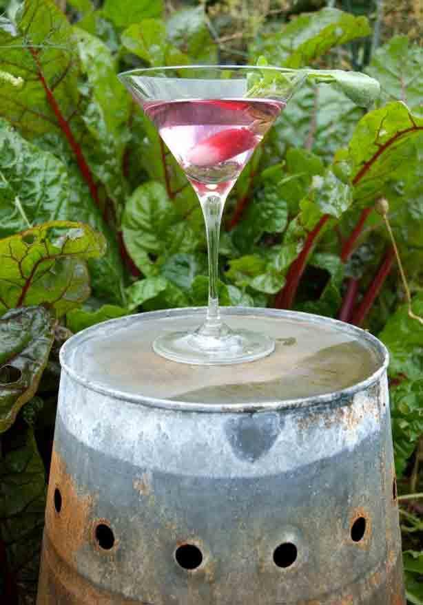 midnight-apothecary-cocktail-eleanor-salton-thorne
