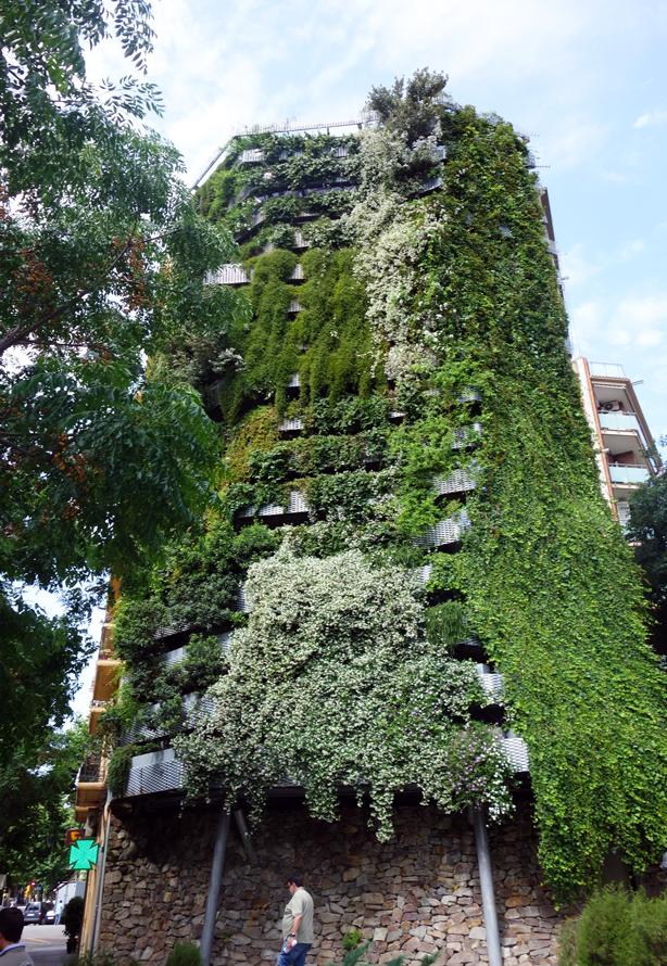 green-side-wall-jardi-tarradellas-barcelona-facade-urbangardensweb
