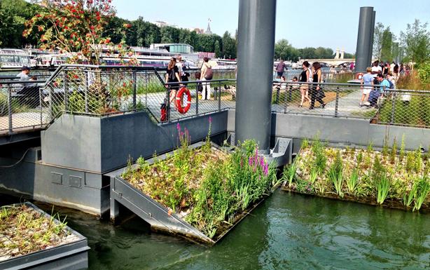 berges-seine-cleaning-water-urban-ecosystem-urban-observer