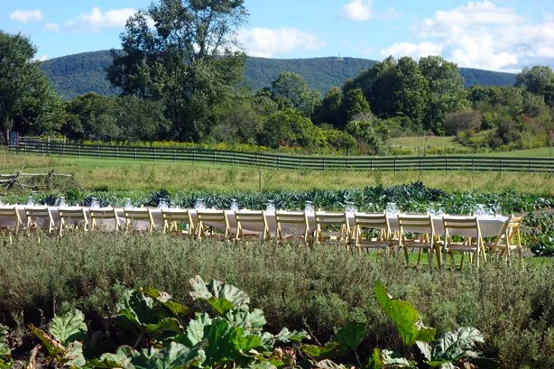 outstanding-in-field-table-from-garden-urbangardensweb