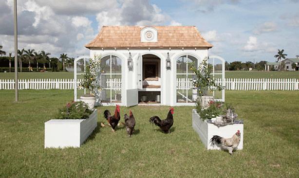 neiman-marcus-chicken-coop-exterior