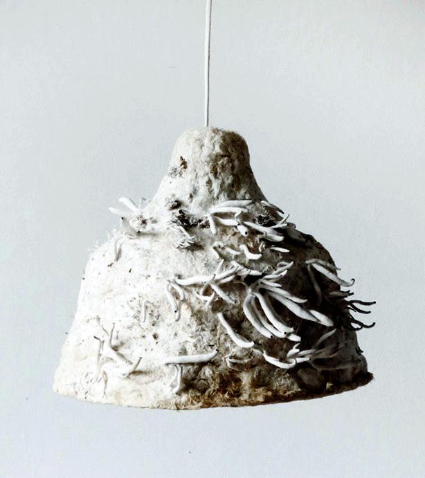 mushroom-fiber-edible-lamp-urbangardensweb