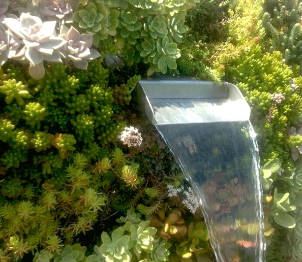 vertical-succulent-garden-oitdoor-shower-water-flowing-urbangardensweb