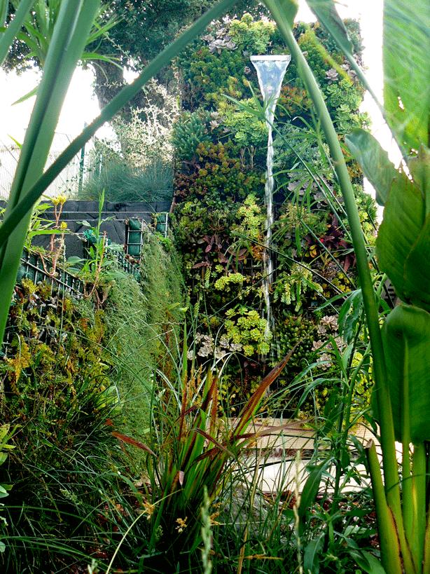 vertical-succulent-garden-outdoor-shower-water-flow-urbangardensweb
