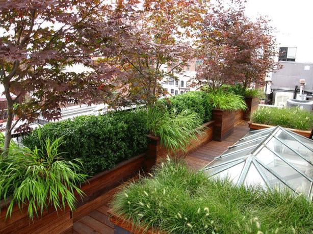 roof-garden-3