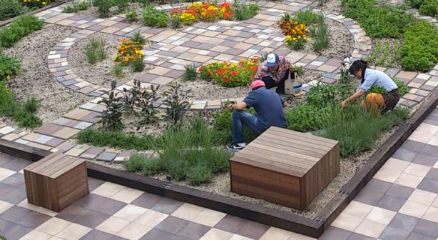 Soradofarm makes rooftop gardens at Japanese train stations.