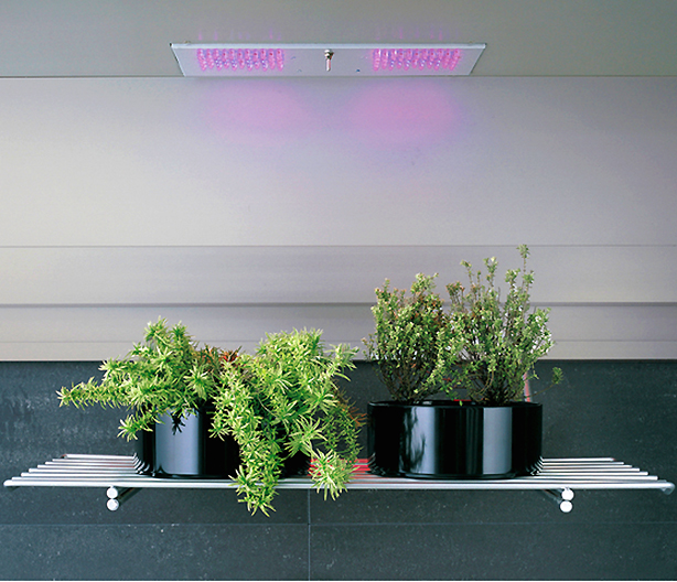 arclinea-accessories-plant-shelf-with-overhead-lights