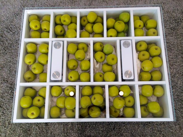 clever-storage-plexi-table-with-apples