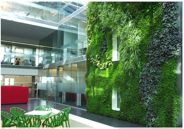 How To Build A Living Wall Indoor