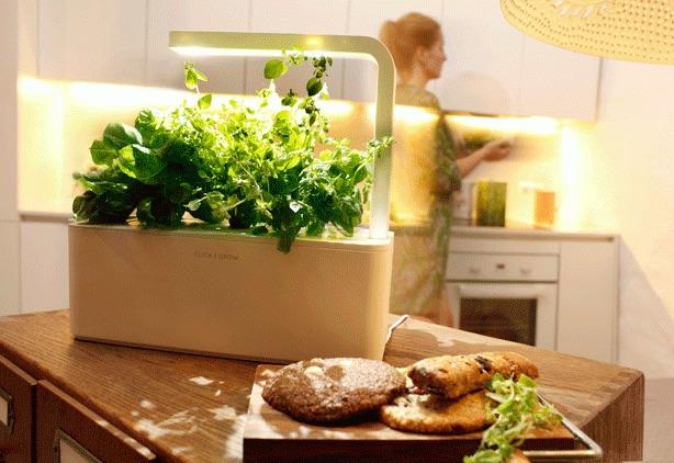 A Grown Up Smart Countertop Herb Garden, Countertop Herb Garden