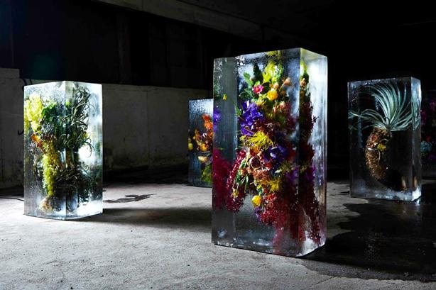 iced-flowers-makoto-azuma-botanical-artworks-urbangardensweb