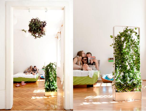 plantus-indoors