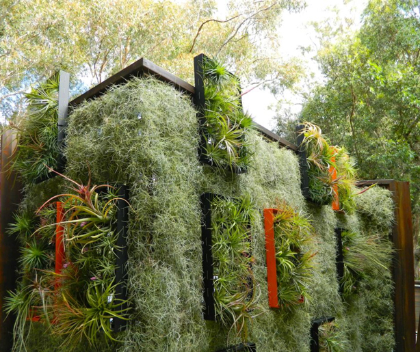 Rooftop Airplant Vertical Garden Hides Solar Panels
