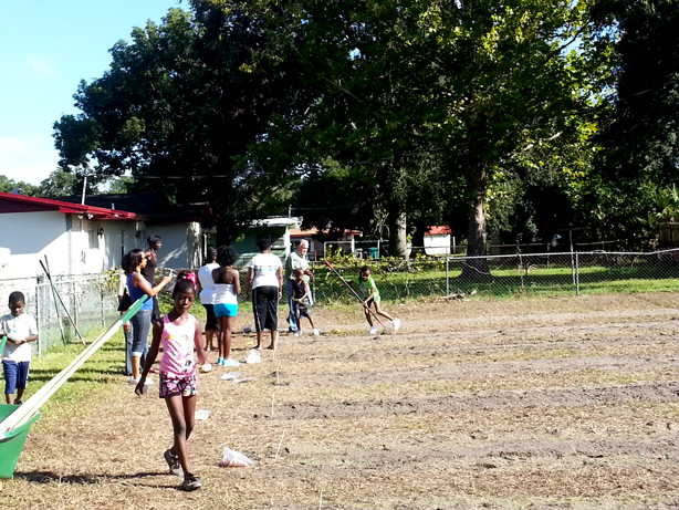 washington-shores-community-garden-fiskars_Sowing-Seeds_urbangardensweb