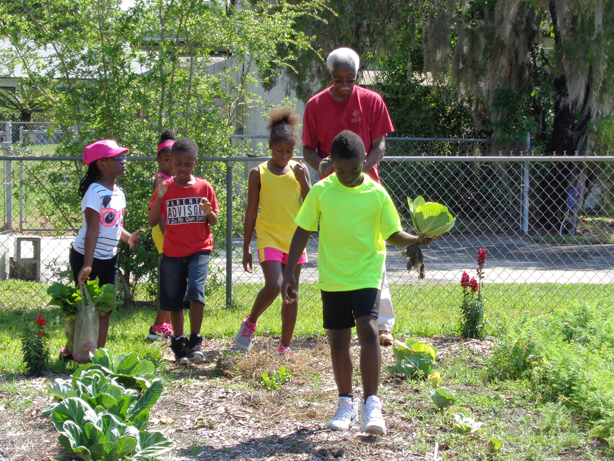 washington_shores_community_garden_spring-harvest-2015-fiskars_grant_urbangardensweb