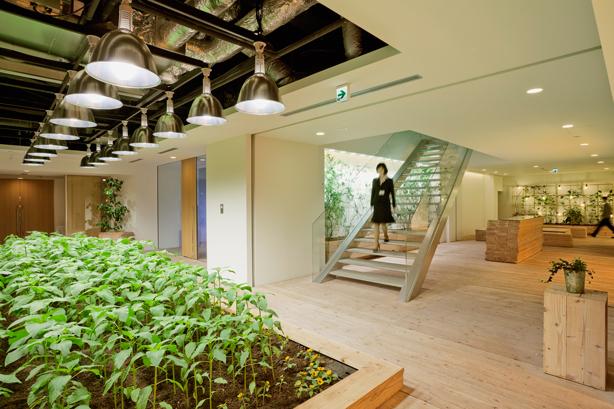 pasona-tokyp-office-interior-urban-farm-urbangardensweb