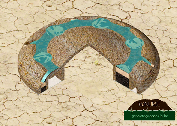bionurse-soil_remediation_biomimicary_design_urbangardensweb