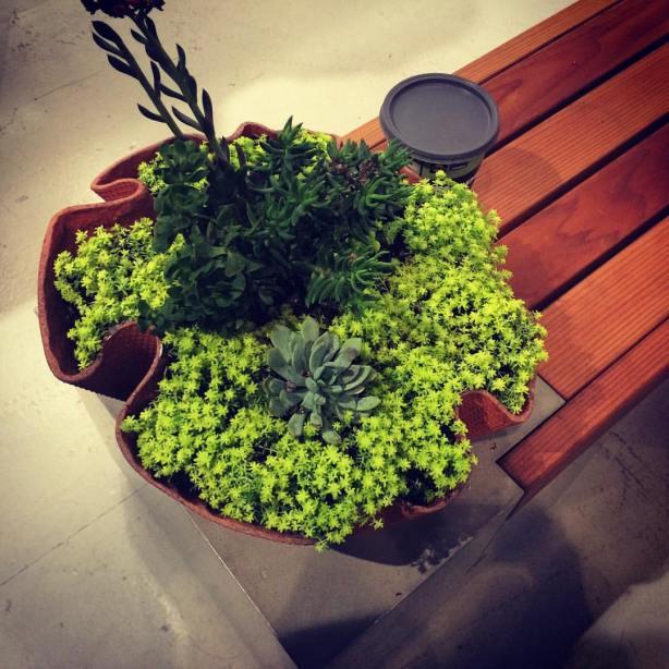 planter bench combo