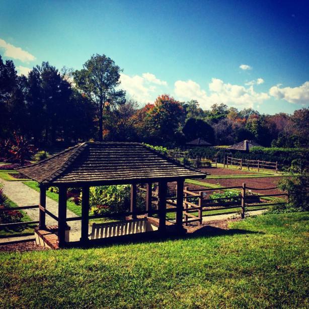 Winston-Salem Pastoral Farm