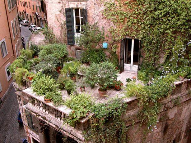 facebook-italian-rooftop-garden-urbangardensweb-viral-post