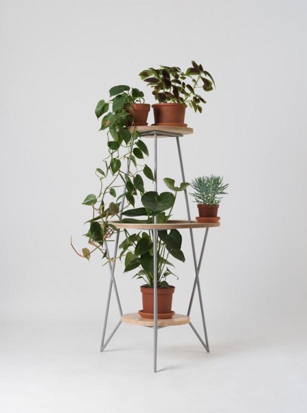 Lesha Galkin plant holder