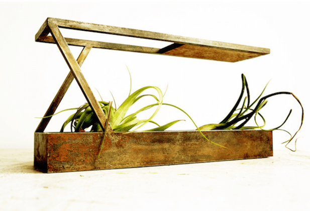 Plant in City Steel Planter