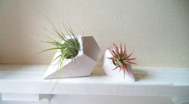 Teardrop Mini Planter