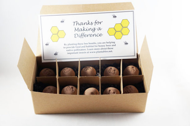 seed bombs for bees