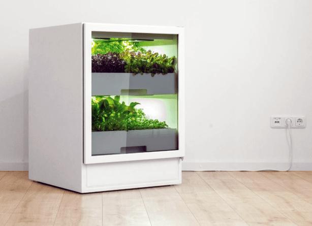plantcube-urbangardensweb
