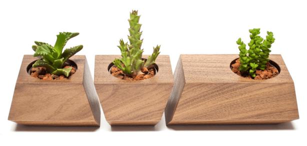revolution_boxcar_Succulent-Wood-Planter