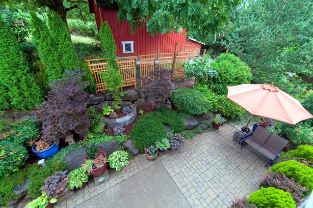 Hedges from Garden Good Direct define outdoor spaces