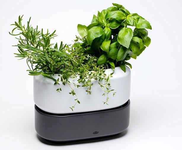ChefN-Herb-Pot-urbangardensweb_gifts