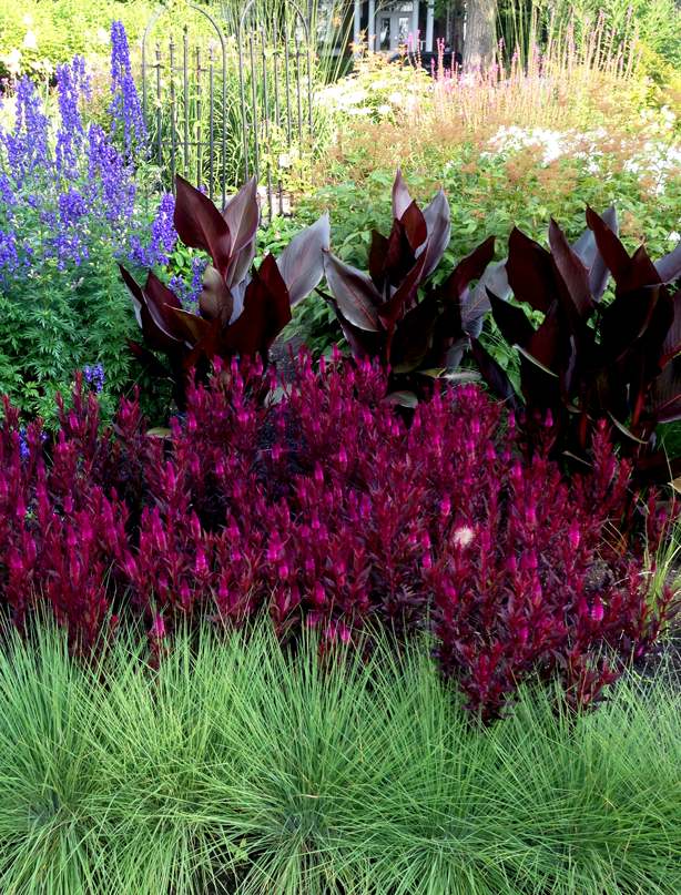How to Keep Plants Hydrated In Summer Heat